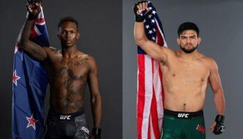 Прогноз на бой Гастелум — Адесанья на UFC 236
